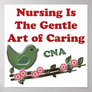 Ayudante de cuidado certificado póster