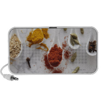Ayurvedic Warming Spices Travelling Speakers