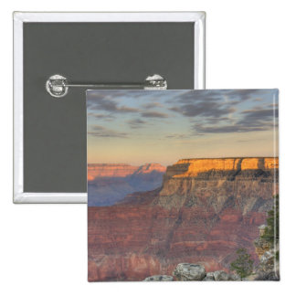 AZ, Arizona, Grand Canyon National Park, South Pinback Button