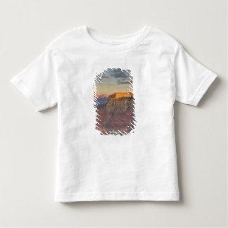 AZ, Arizona, Grand Canyon National Park, South Toddler T-shirt