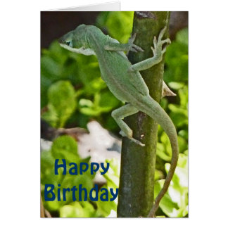 AZ- Chameleon Lizard Birthday Card