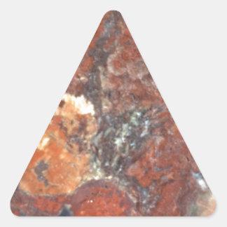 AZ Petrified Wood Triangle Sticker