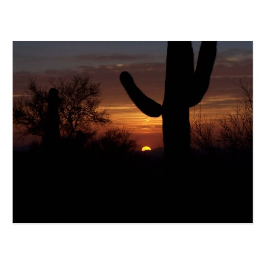 AZ sunset 1 Postcard