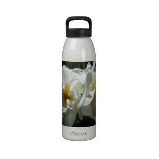 Azafrán Botella De Agua Reutilizable