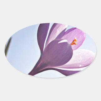 Azafrán bonita pegatinas ovales