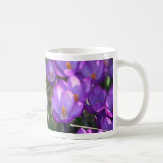 Azafrán de la primavera taza clásica