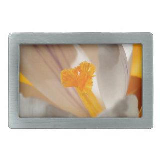 azafrán hebilla cinturon rectangular