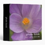 Azafrán púrpura PICT5930