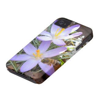 Azafrán púrpura y el caso del iPhone 4 de la abeja Case-Mate iPhone 4 Cobertura