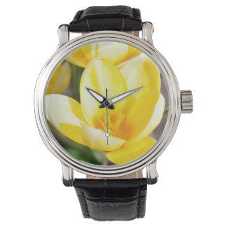 azafrán reloj