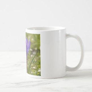 Azafrán violeta taza clásica