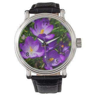 Azafranes de la lila relojes
