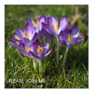 "Azafranes púrpuras DSC5451 Invitación 5.25"" X 5.25"""