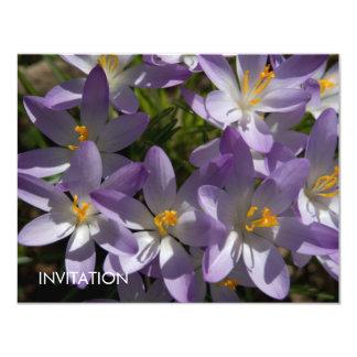 "Azafranes púrpuras DSC5454 Invitación 4.25"" X 5.5"""