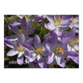 "Azafranes púrpuras DSC5454 Invitación 5"" X 7"""