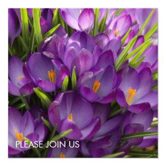 "Azafranes púrpuras DSC5938 Invitación 5.25"" X 5.25"""