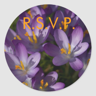 Azafranes púrpuras • Pegatina de RSVP