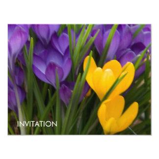"""Azafranes púrpuras y amarillas DSC5929 Invitación 4.25"""" X 5.5"""""""