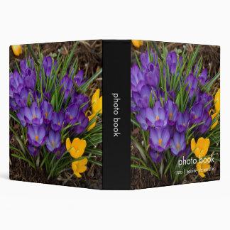 """Azafranes púrpuras y amarillas DSC5930 Carpeta 1 1/2"""""""
