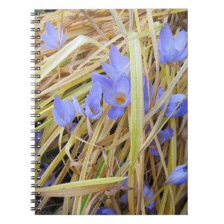 Azafranes texturizadas de la caída en cuaderno esp