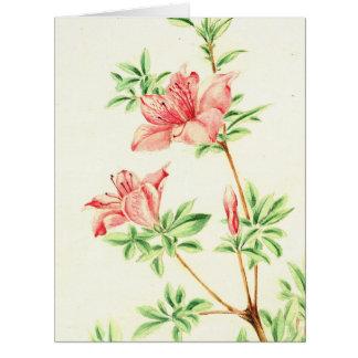 Azalea 1870 tarjeta de felicitación grande