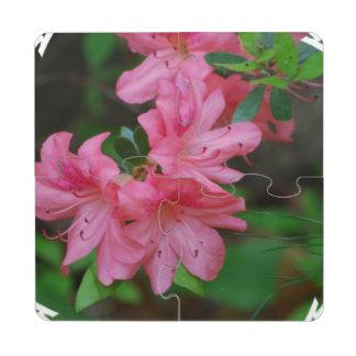 azalea-4 puzzle coaster