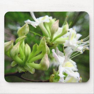 Azalea blanca Mousepad