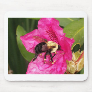 Azalea Bloom and Bee Mouse Pad