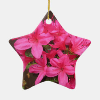 Azalea Dark Pink Close Ceramic Ornament