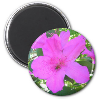 Azalea de antaño imán redondo 5 cm