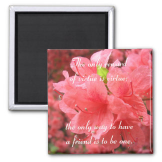 Azalea Field: Friendship - Magnet #1
