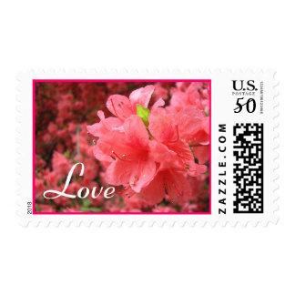 Azalea Field: Love - Postage #1