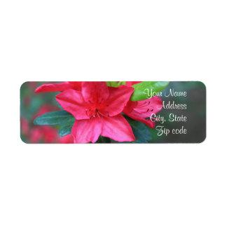 Azalea flower Address Labels