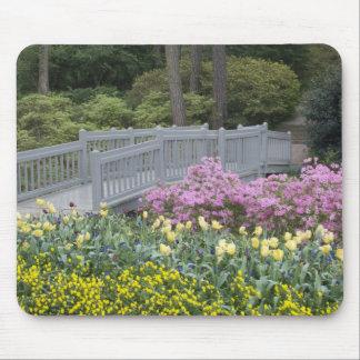Azalea Heath Family (Ericaceae), Tulip, and Mouse Pad