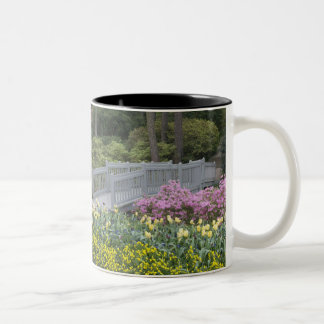 Azalea Heath Family (Ericaceae), Tulip, and Two-Tone Coffee Mug