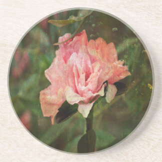Azalea, mon Amour Coaster