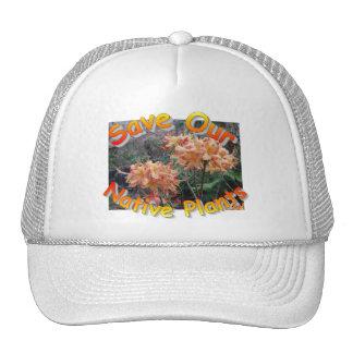 Azalea nativa de la llama gorras