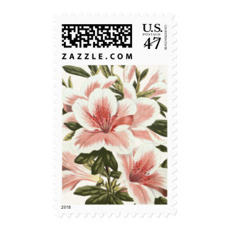 Azalea Postage Stamp