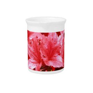 azalea red flowers beverage pitcher