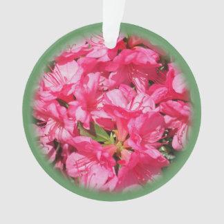 Azalea rosada