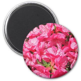 Azalea rosada imán para frigorifico