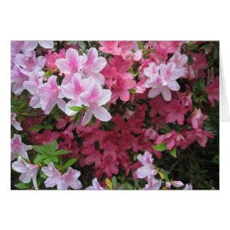 Azalea rosada NoteCard Tarjeta De Felicitación