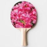 Azalea rosada pala de tenis de mesa