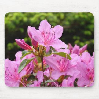 AZALEAS Azalea Flowers MOUSE PADS MOUSEPAD