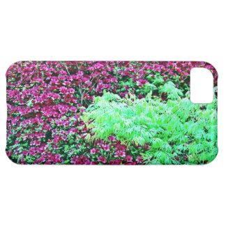 Azaleas de las rosas fuertes y el jardín de Monet