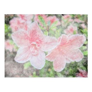 Azaleas descoloradas tarjetas postales