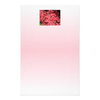 Azaleas. Flores rosadas bonitas Flyer Personalizado