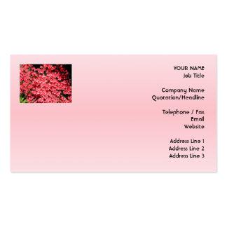 Azaleas. Flores rosadas bonitas Plantilla De Tarjeta Personal