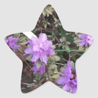 Azaleas In Brush Strokes Stickers