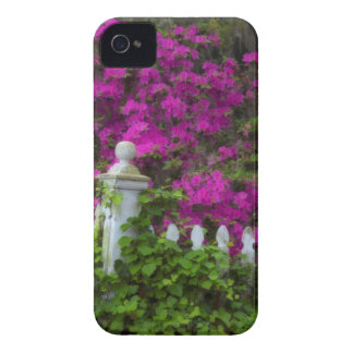 Azaleas in the spring at Historic Isle of Hope iPhone 4 Case-Mate Case